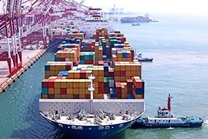 Amber Road Cargo Screening Solution