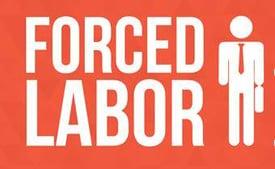 Forced Labor 2.jpg