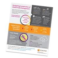 lp-Infographic-navigating-complexities.jpg